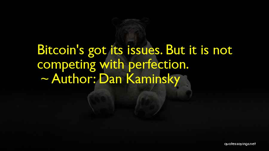 No Such Thing As Perfection Quotes By Dan Kaminsky