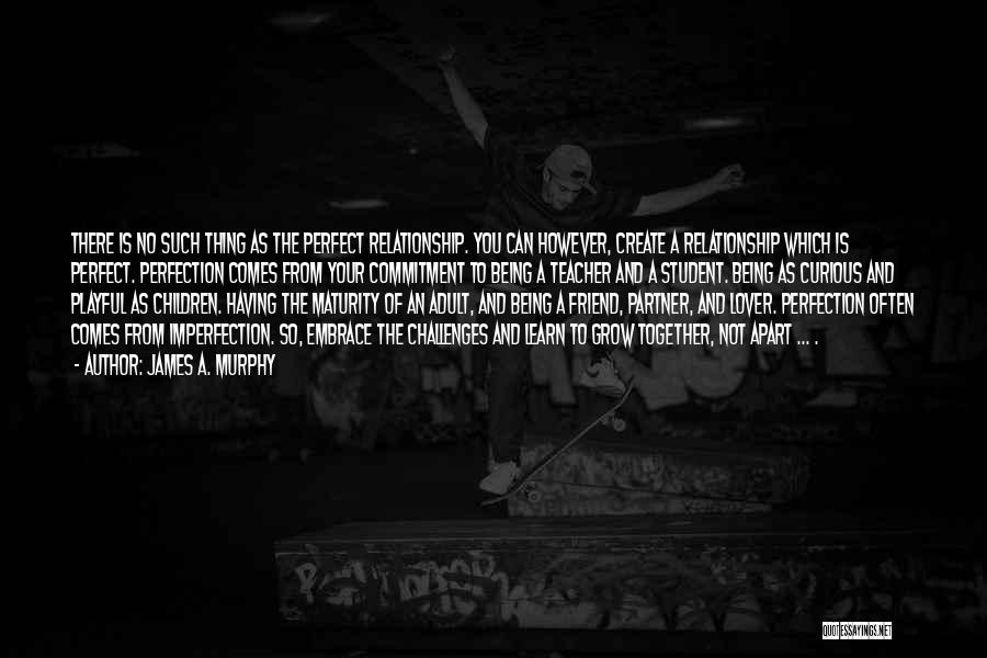 No Such Thing As Perfection Quotes By James A. Murphy