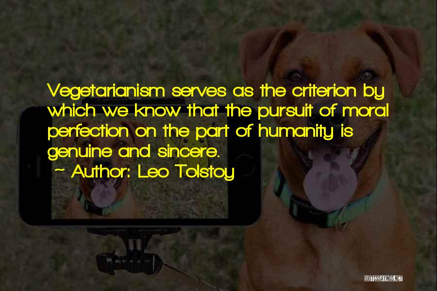 No Such Thing As Perfection Quotes By Leo Tolstoy