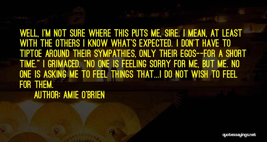 No Time For Me Love Quotes By Amie O'Brien