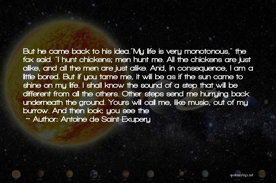No Time For Me Love Quotes By Antoine De Saint-Exupery