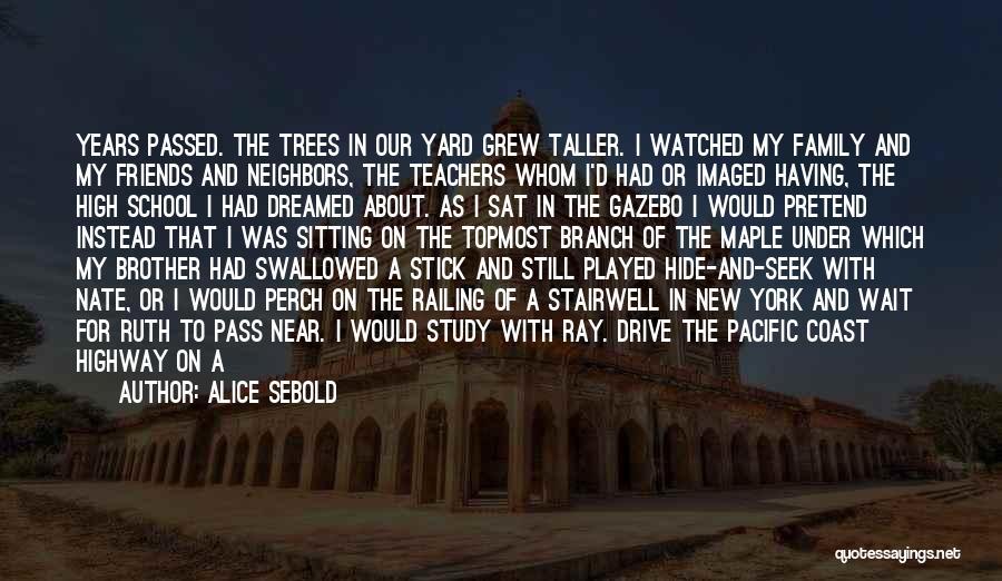 No Trace Quotes By Alice Sebold