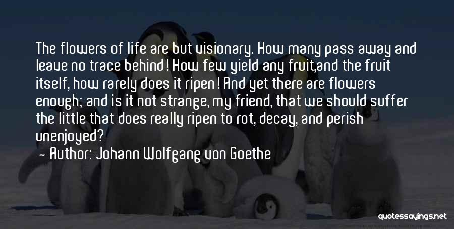 No Trace Quotes By Johann Wolfgang Von Goethe