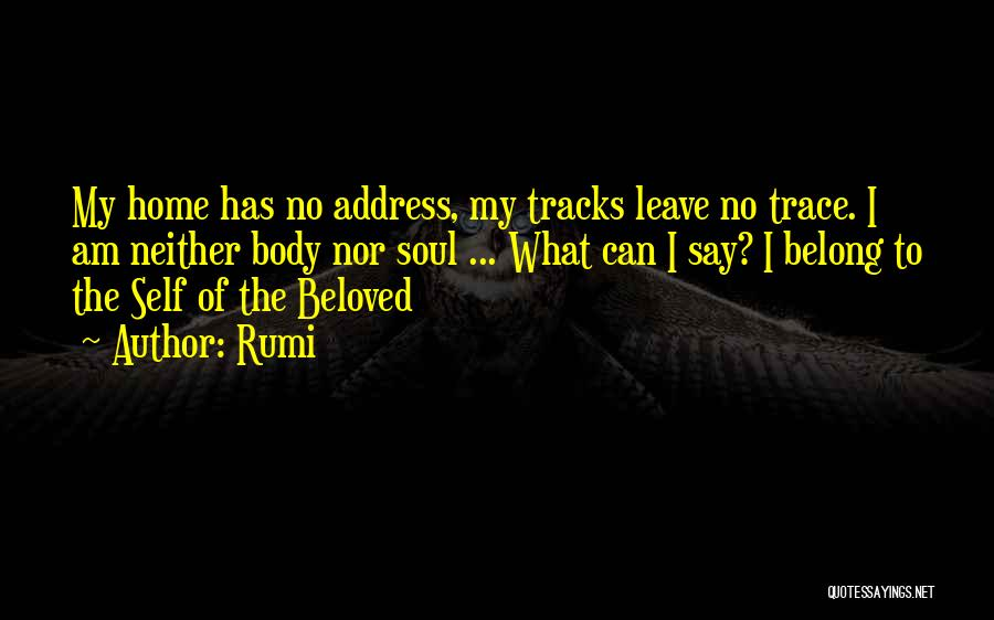 No Trace Quotes By Rumi