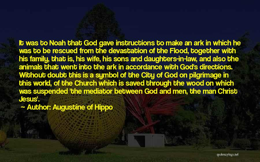 Noah's Ark Quotes By Augustine Of Hippo