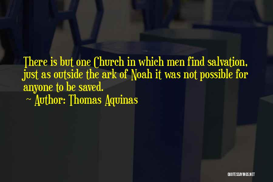 Noah's Ark Quotes By Thomas Aquinas