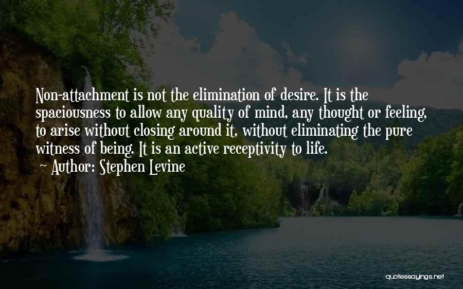 Non Attachment Quotes By Stephen Levine