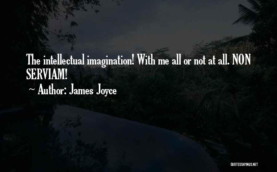 Non Serviam Quotes By James Joyce