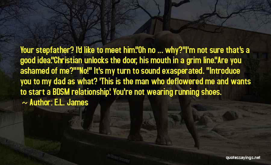 Not A Good Idea Quotes By E.L. James
