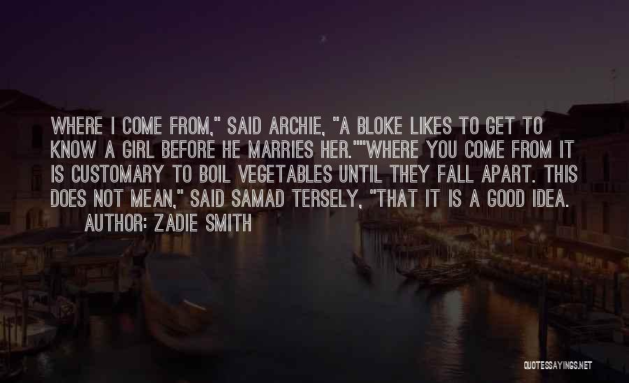 Not A Good Idea Quotes By Zadie Smith