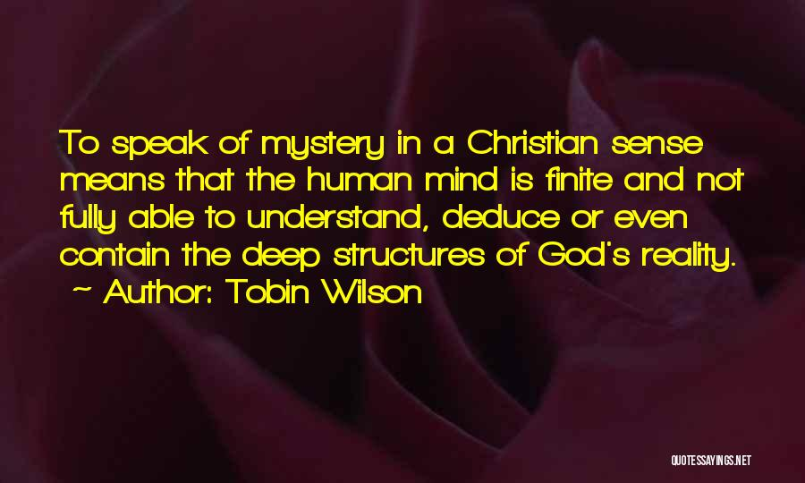 Not Able To Understand Quotes By Tobin Wilson