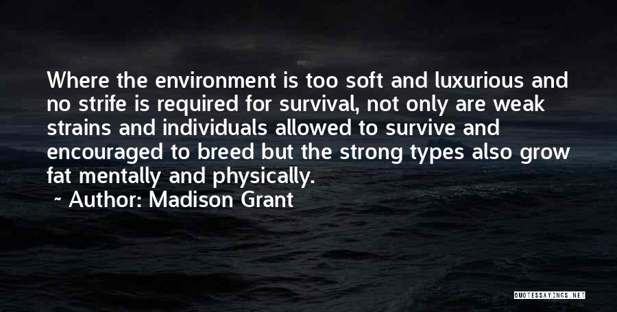 Not Allowed Quotes By Madison Grant