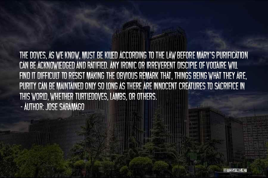 Not Being Acknowledged Quotes By Jose Saramago