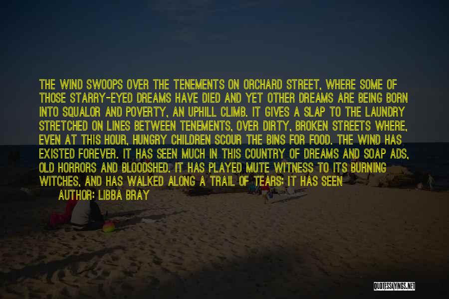 Not Being Afraid To Get Dirty Quotes By Libba Bray