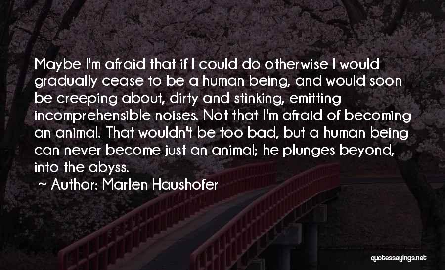 Not Being Afraid To Get Dirty Quotes By Marlen Haushofer