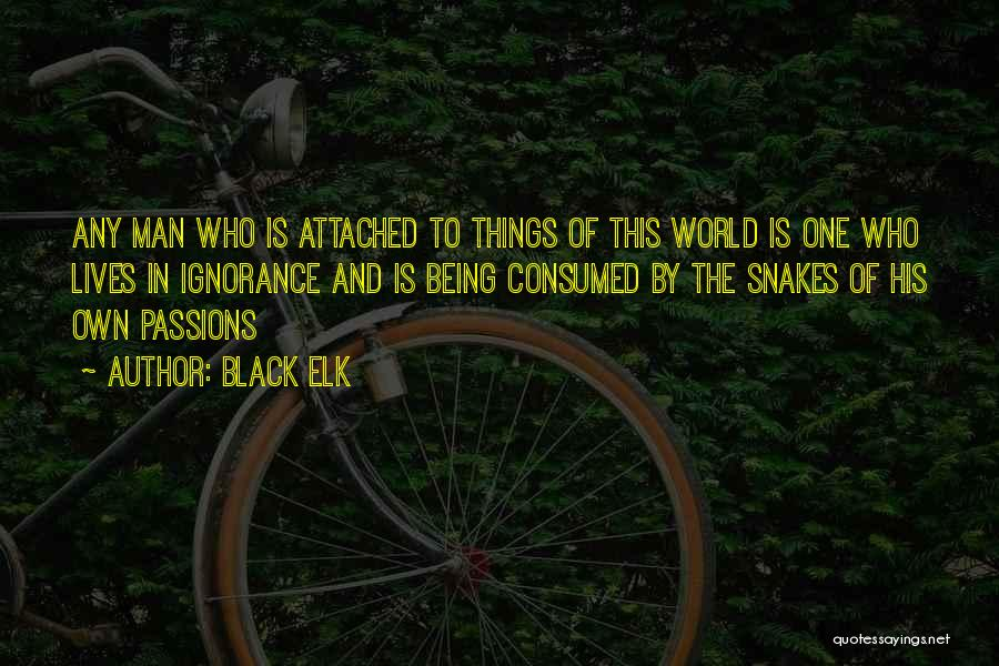 Not Being Attached To Someone Quotes By Black Elk