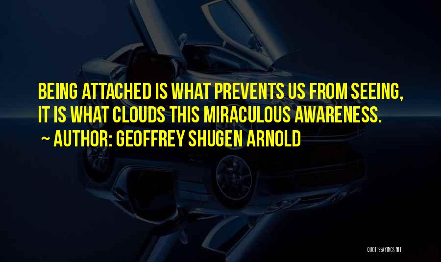 Not Being Attached To Someone Quotes By Geoffrey Shugen Arnold