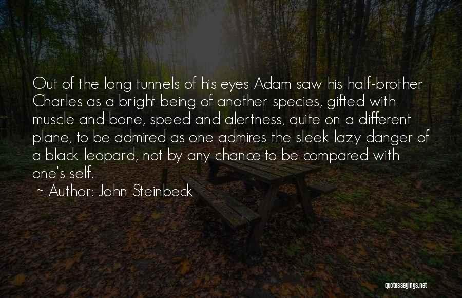 Not Being Compared Quotes By John Steinbeck