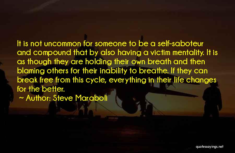 Not Blaming Others Quotes By Steve Maraboli