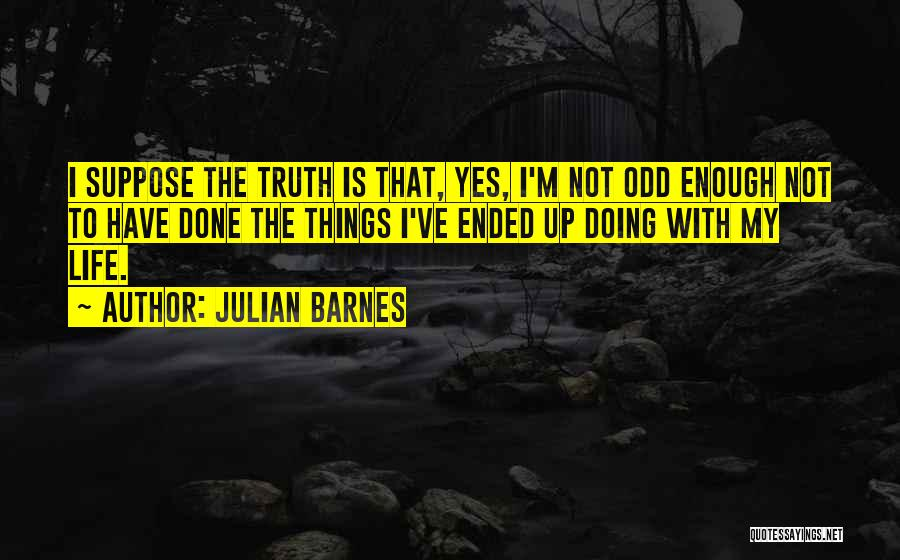 Not Doing Enough Quotes By Julian Barnes