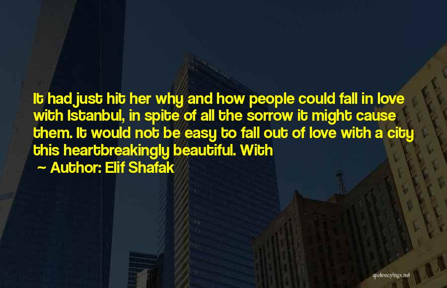 Not Easy To Fall In Love Quotes By Elif Shafak