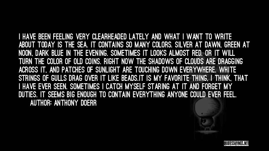 Not Feeling Like Myself Lately Quotes By Anthony Doerr