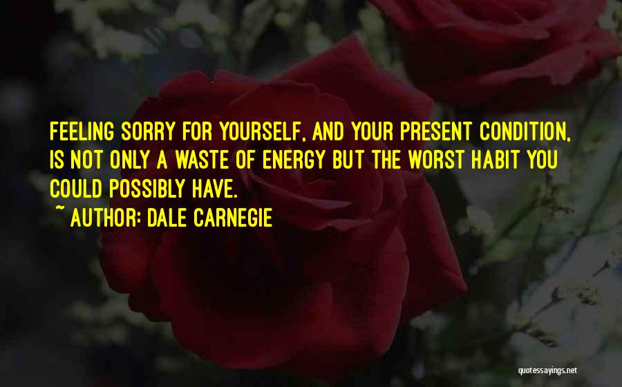 Not Feeling Sorry For Yourself Quotes By Dale Carnegie