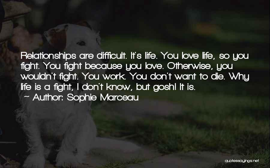 Not Fighting In Relationships Quotes By Sophie Marceau