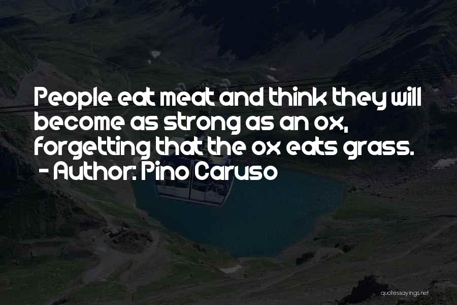 Not Forgetting Yourself Quotes By Pino Caruso