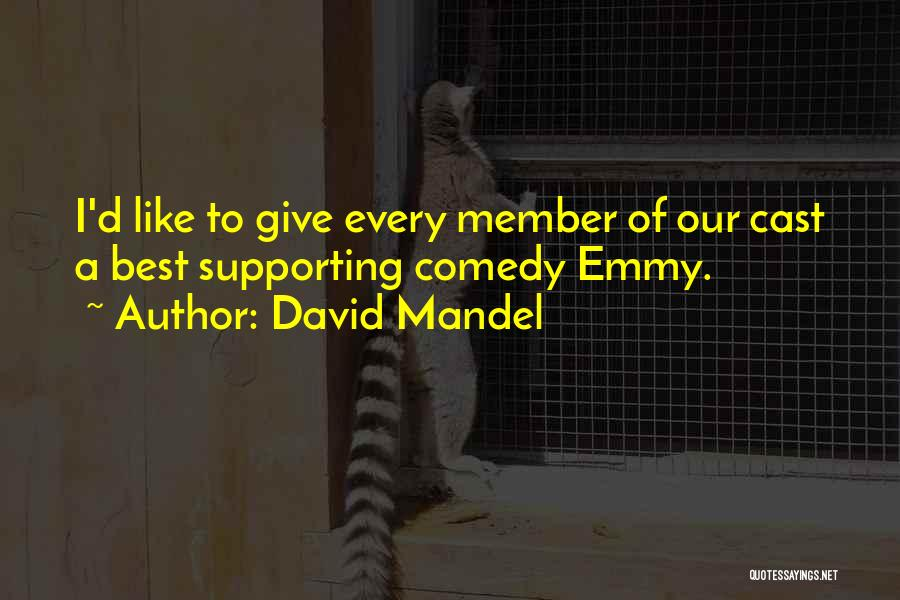 Not Giving Up On Someone Quotes By David Mandel