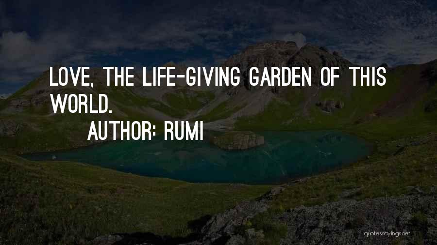 Not Giving Up On Someone U Love Quotes By Rumi