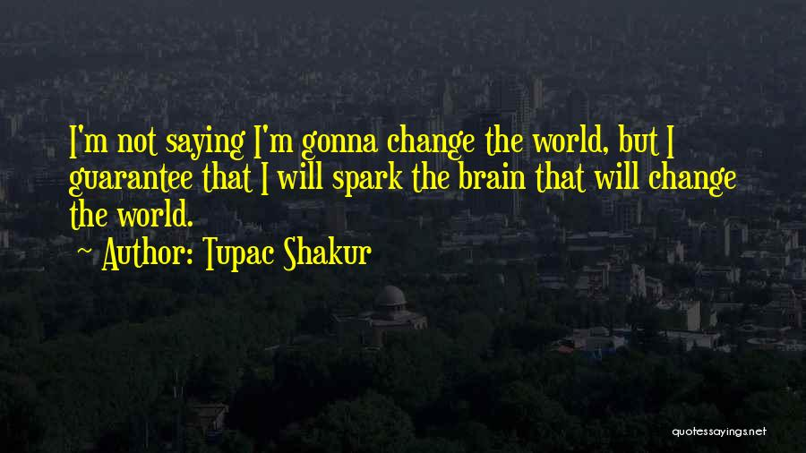 Not Gonna Change Quotes By Tupac Shakur