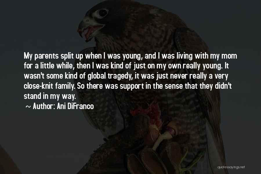 Not Having Family Support Quotes By Ani DiFranco