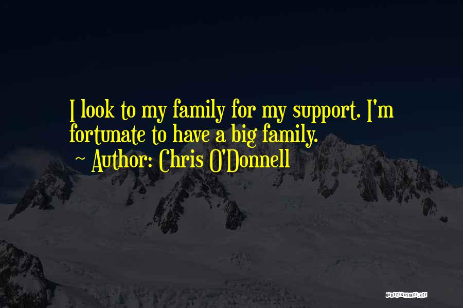 Not Having Family Support Quotes By Chris O'Donnell