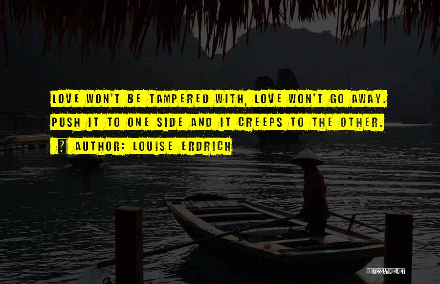 Not Having You By My Side Quotes By Louise Erdrich