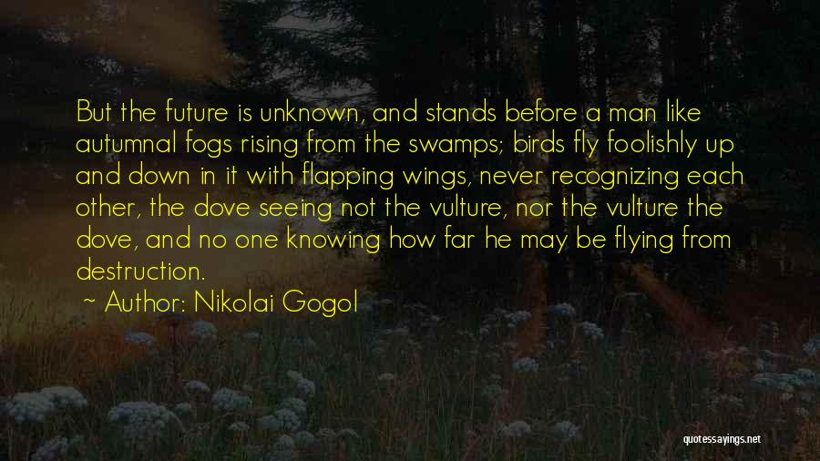 Not Knowing The Unknown Quotes By Nikolai Gogol