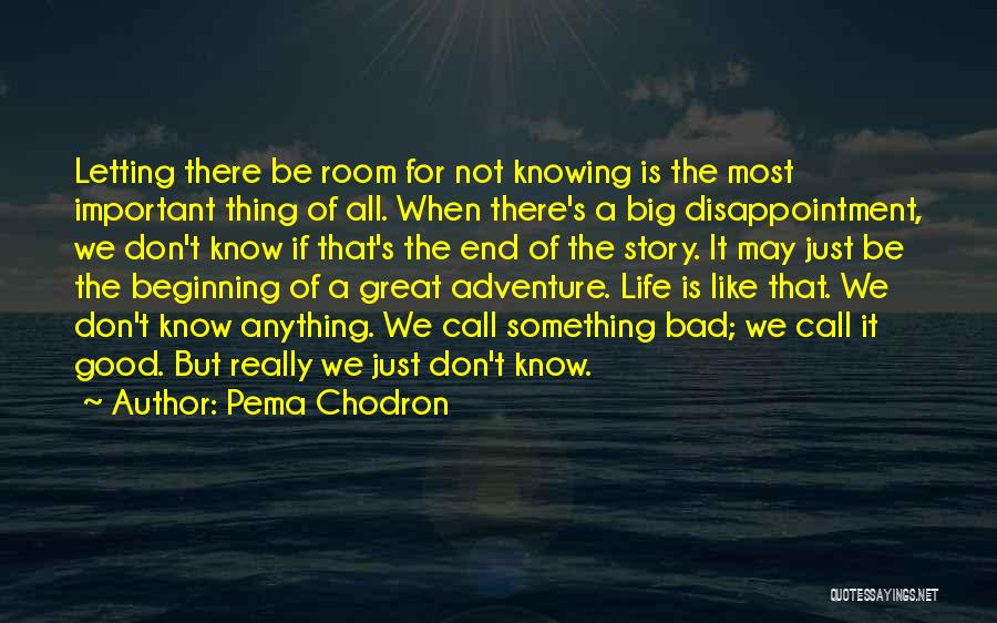 Not Knowing The Unknown Quotes By Pema Chodron