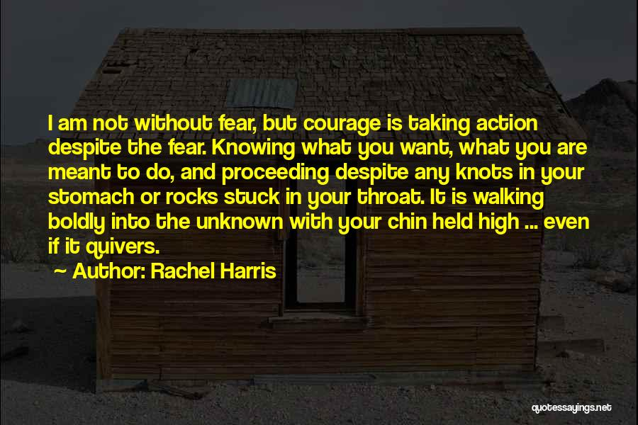 Not Knowing The Unknown Quotes By Rachel Harris