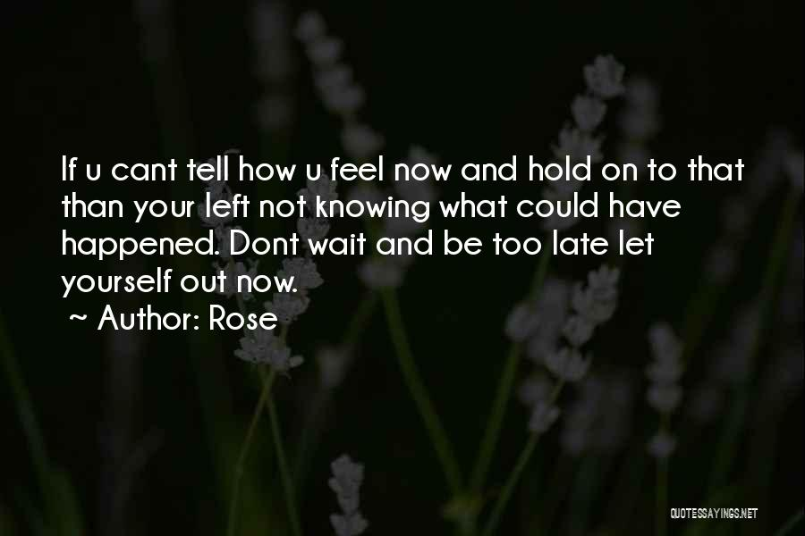 Not Knowing What Happened Quotes By Rose