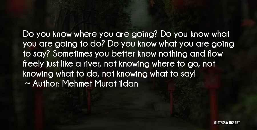 Not Knowing Where You're Going Quotes By Mehmet Murat Ildan