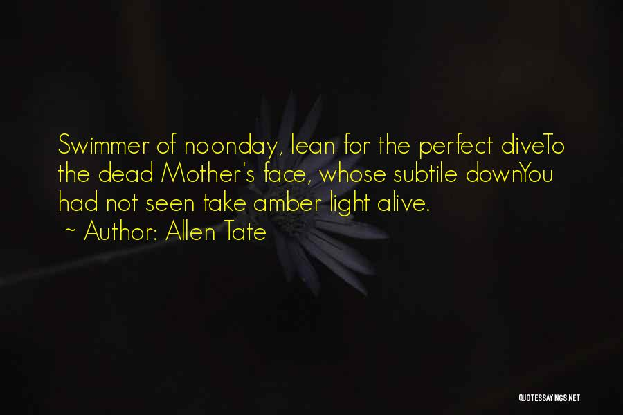 Not Perfect Mother Quotes By Allen Tate