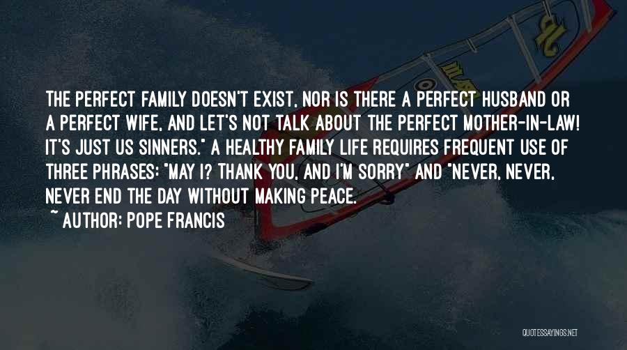 Not Perfect Mother Quotes By Pope Francis