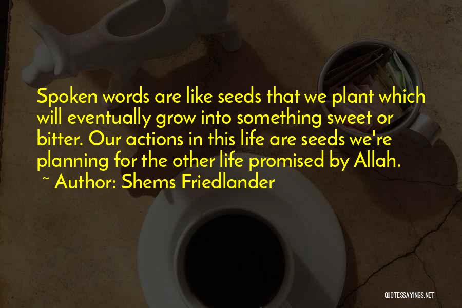 Not Planning Your Life Quotes By Shems Friedlander
