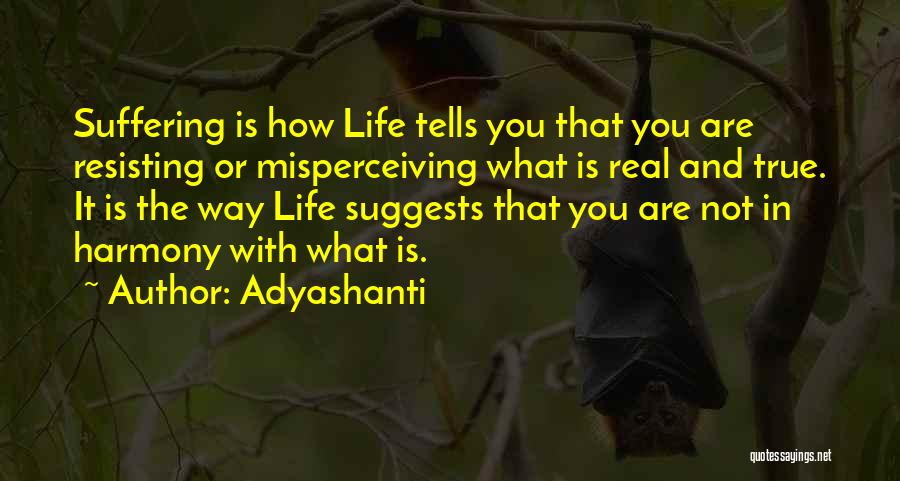 Not Resisting Quotes By Adyashanti