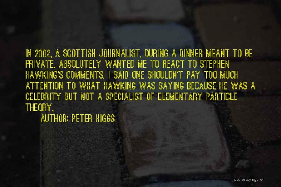 Not Saying Too Much Quotes By Peter Higgs