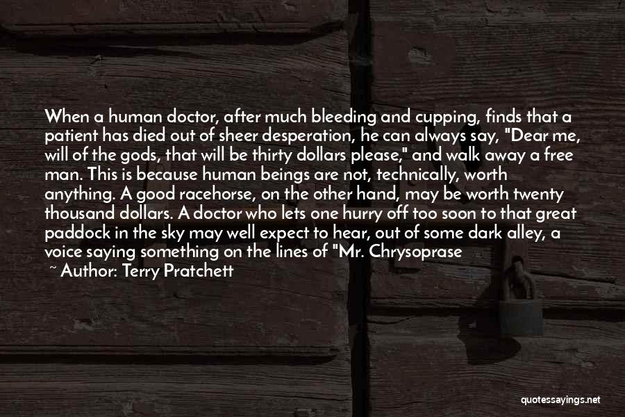 Not Saying Too Much Quotes By Terry Pratchett