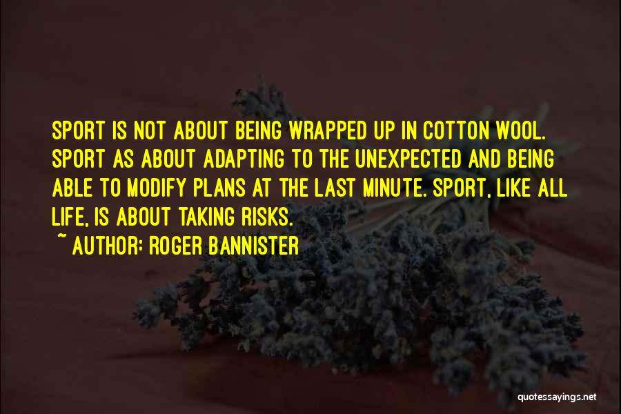 Not Taking Risks Quotes By Roger Bannister