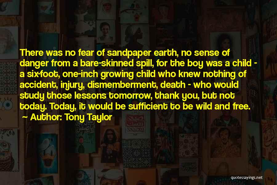 Not To Fear Death Quotes By Tony Taylor