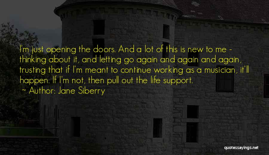 Not Trusting Someone Again Quotes By Jane Siberry