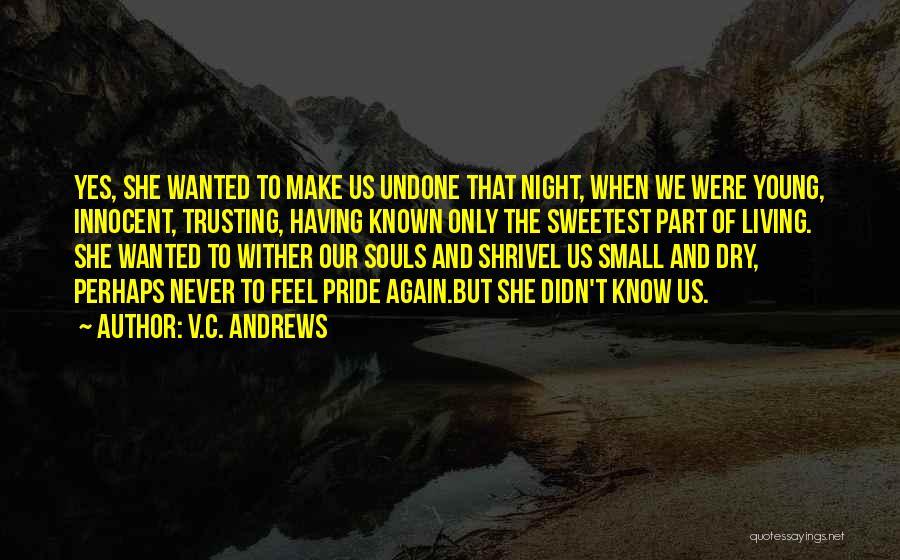 Not Trusting Someone Again Quotes By V.C. Andrews